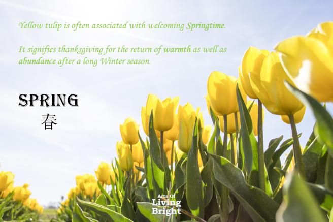 spring-blog