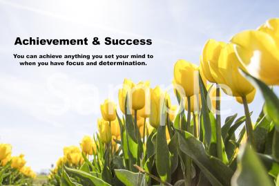 achievement-and-success-landscape-sample-ver0