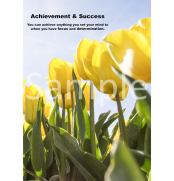 achievement-and-success-portrait-sample-ver0
