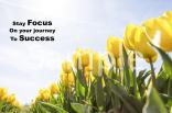 focus-and-success-landscape-sample-ver0