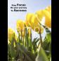 focus-and-success-portrait-sample-ver0